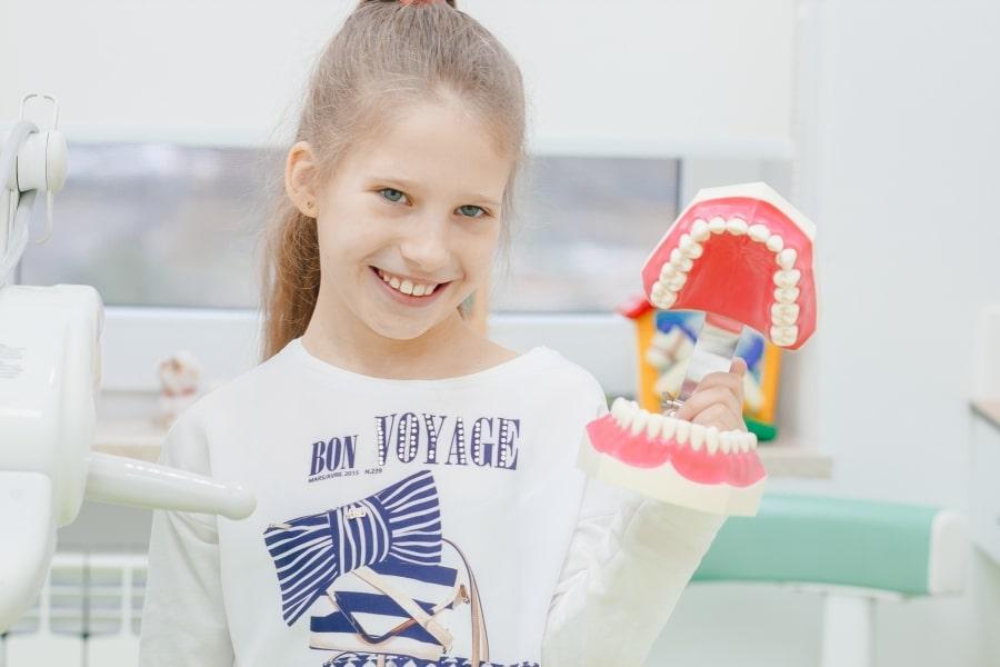 Девочка с макетом челюсти